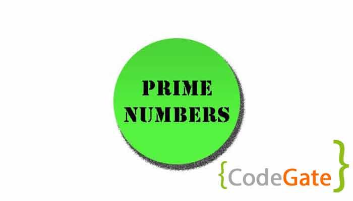 عدد اول در جاوا (Prime Numbers In Java)